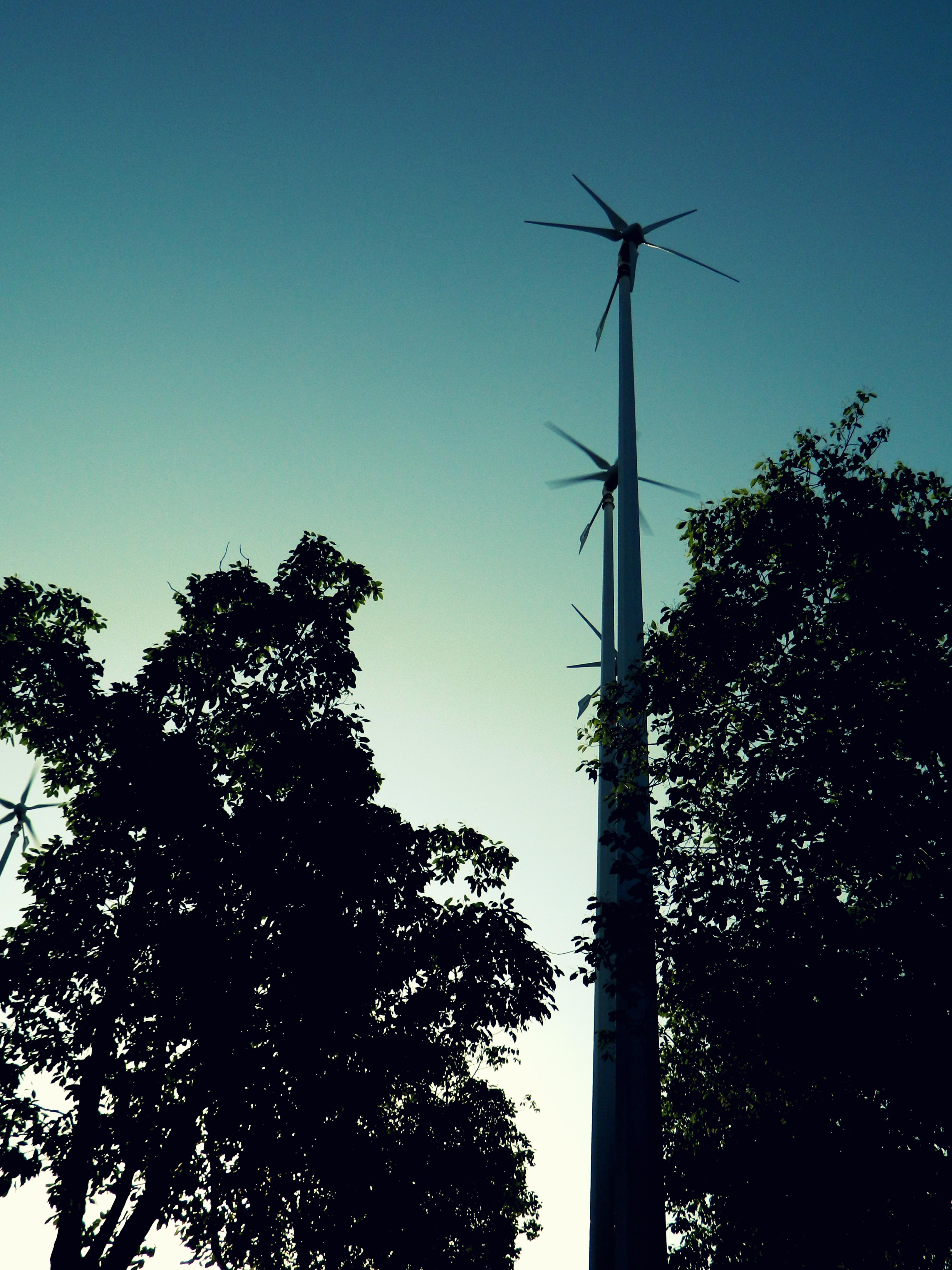 File Wind power generator at Xuhui waterfront panoramio