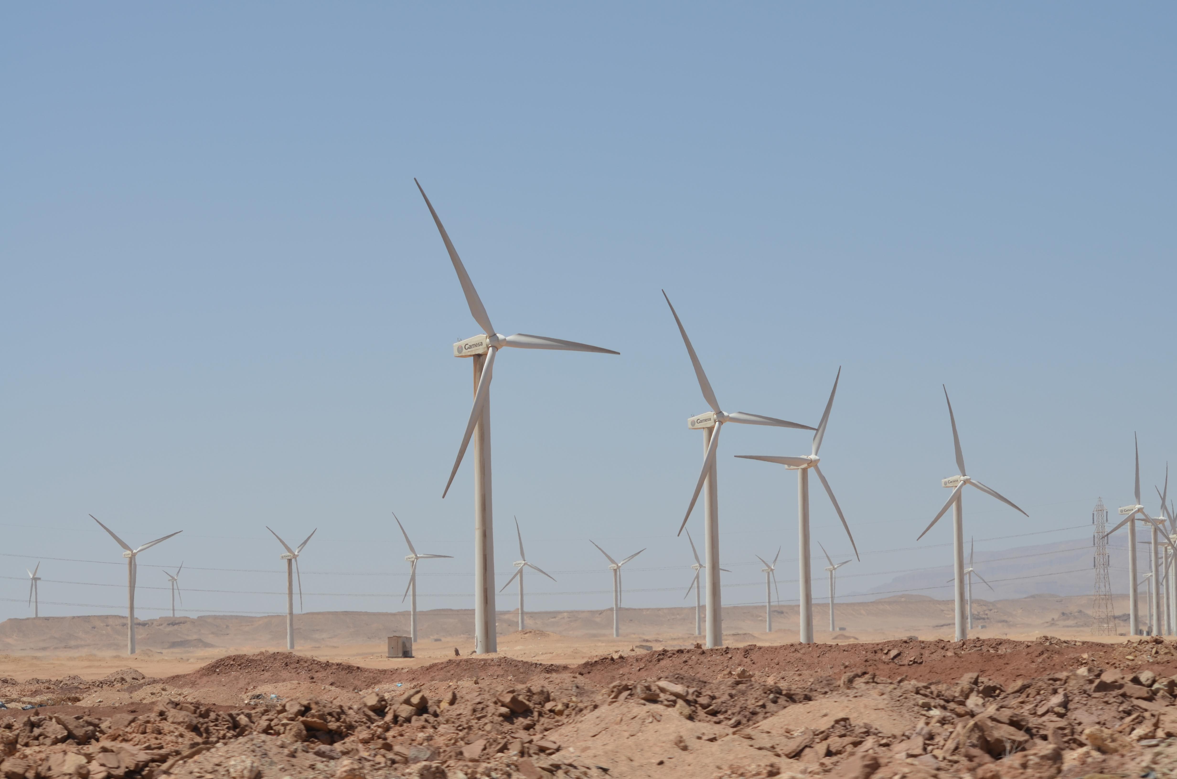Wind turbines, Zaafarana, Egypt by Hatem Moushir