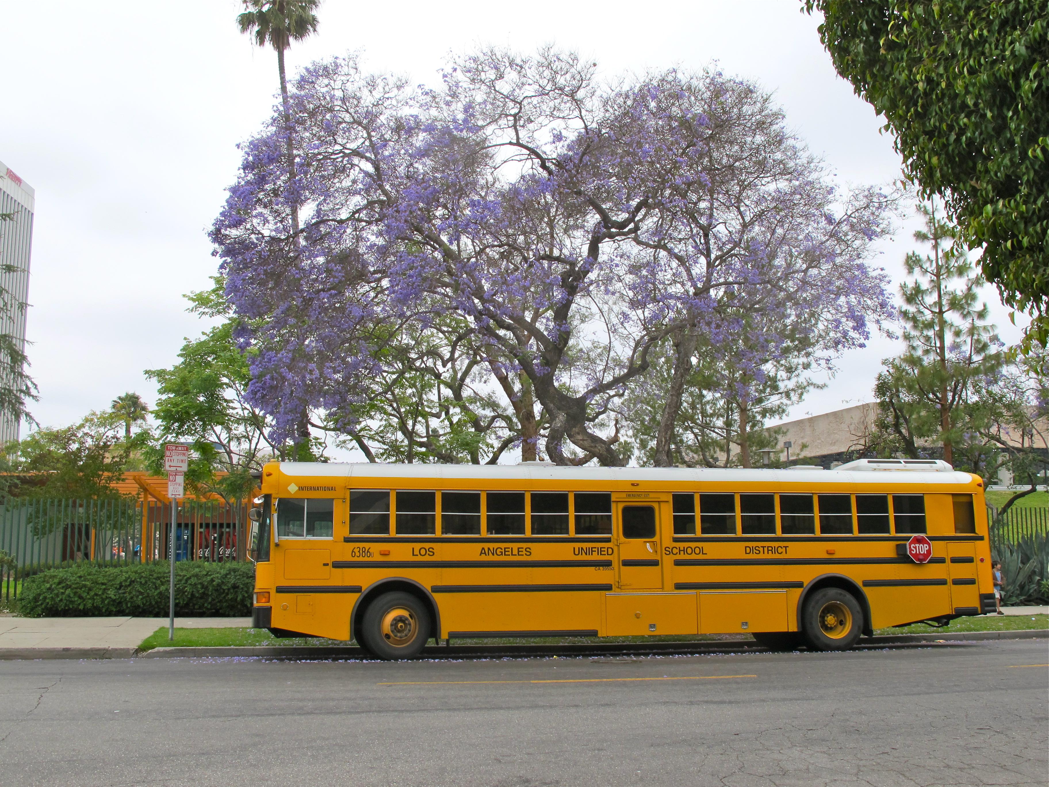 Description 2000s International School bus LAUSD.jpg