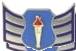 AFJROTC SRA insignia.png