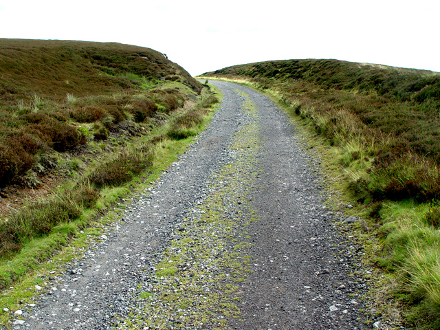 Above Lady Green, Farndale - geograph.org.uk - 895179