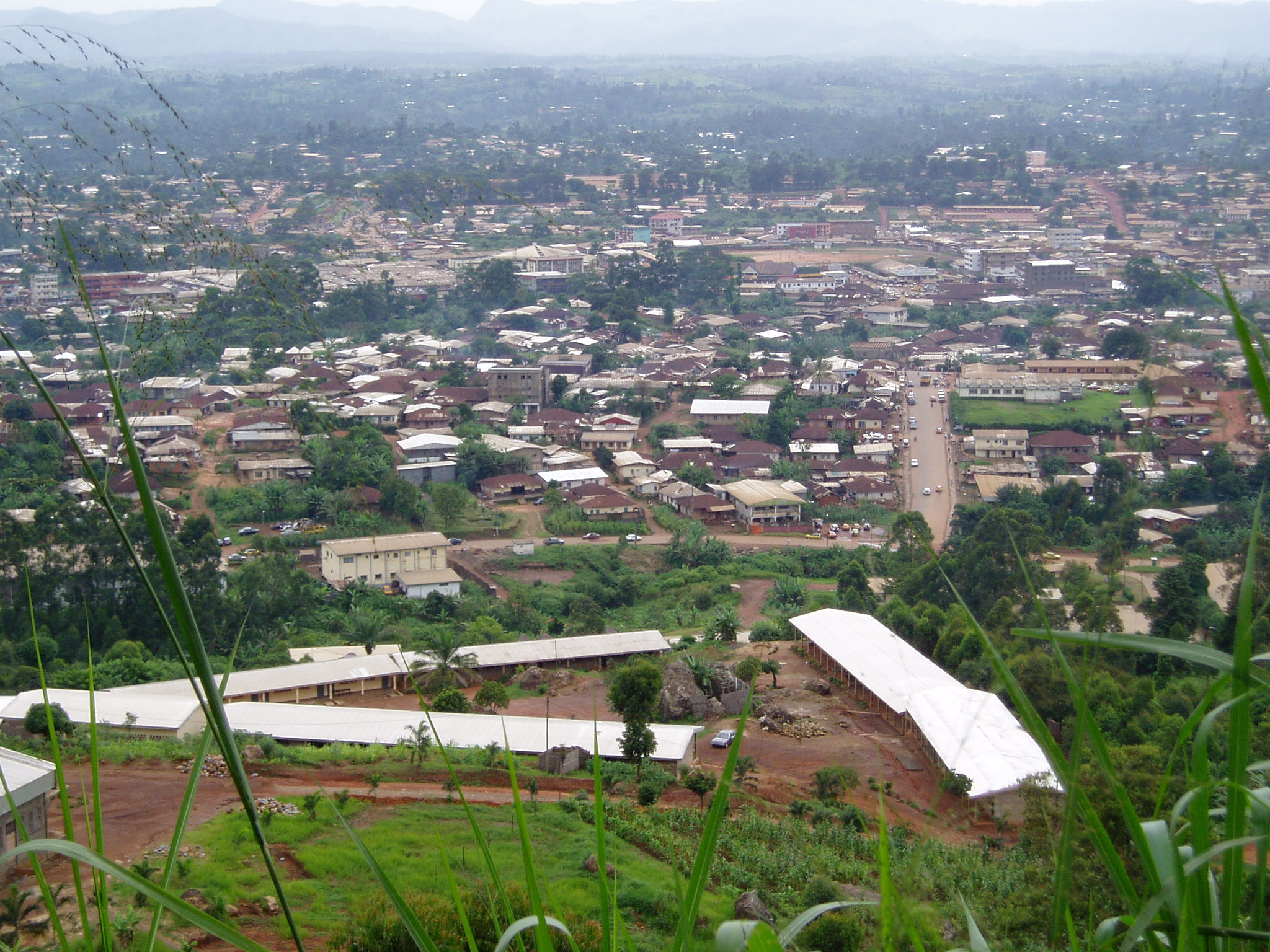 bamenda dating Bamenda, cameroon: coordinates the archaeological site of shum laka is the most prominent rockshelter site in the stratigraphic dating of surface and near.