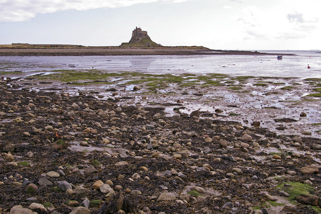 Beach at low tide, Holy Island, Northumberland - geograph.org.uk - 1231059