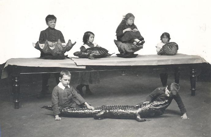 File:Blind children examining taxidermied reptiles and preserved shells (Sunderland Museum, June 1913).jpg