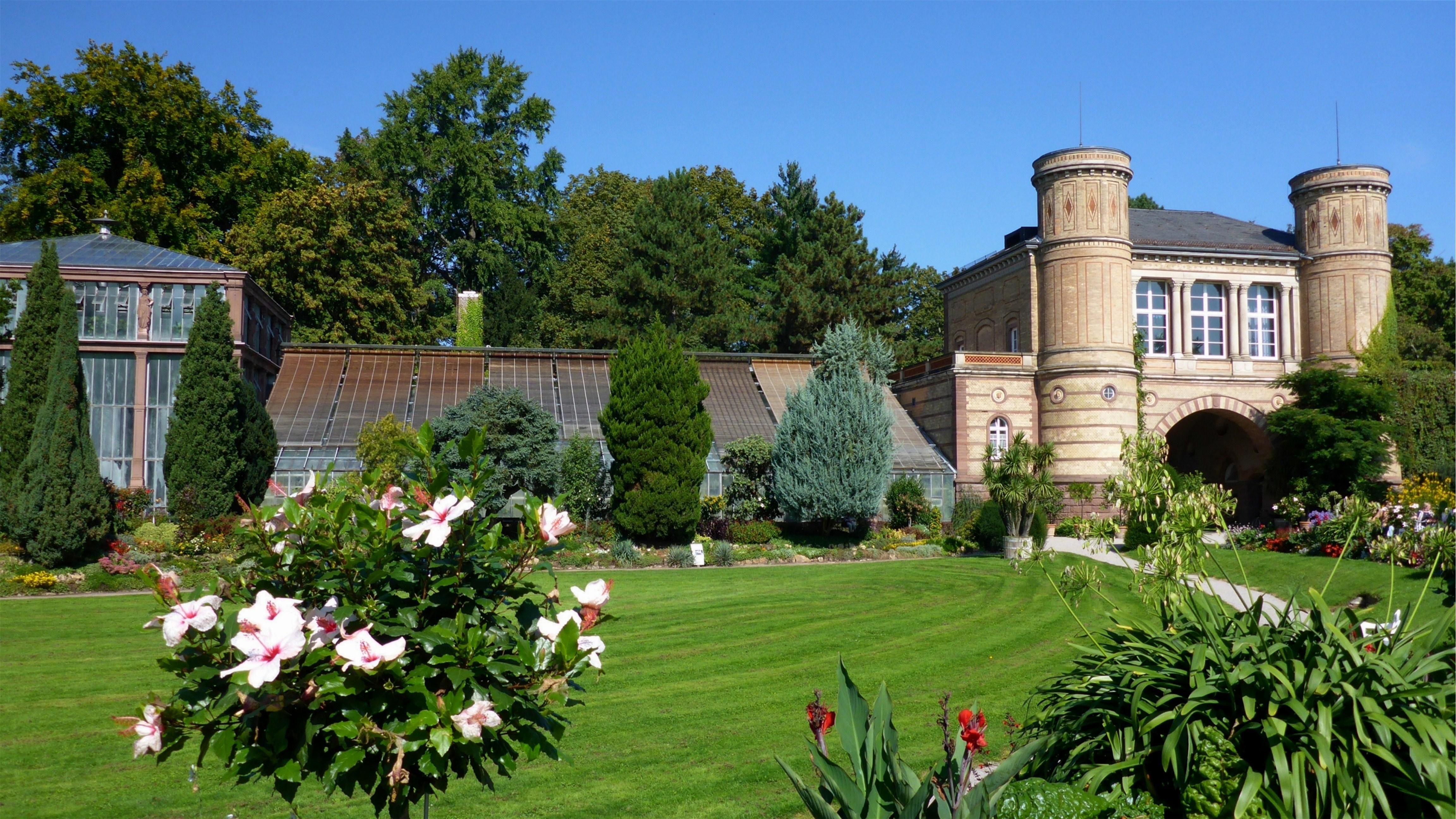 Filebotanischer Garten Karlsruhejpg Wikimedia Commons