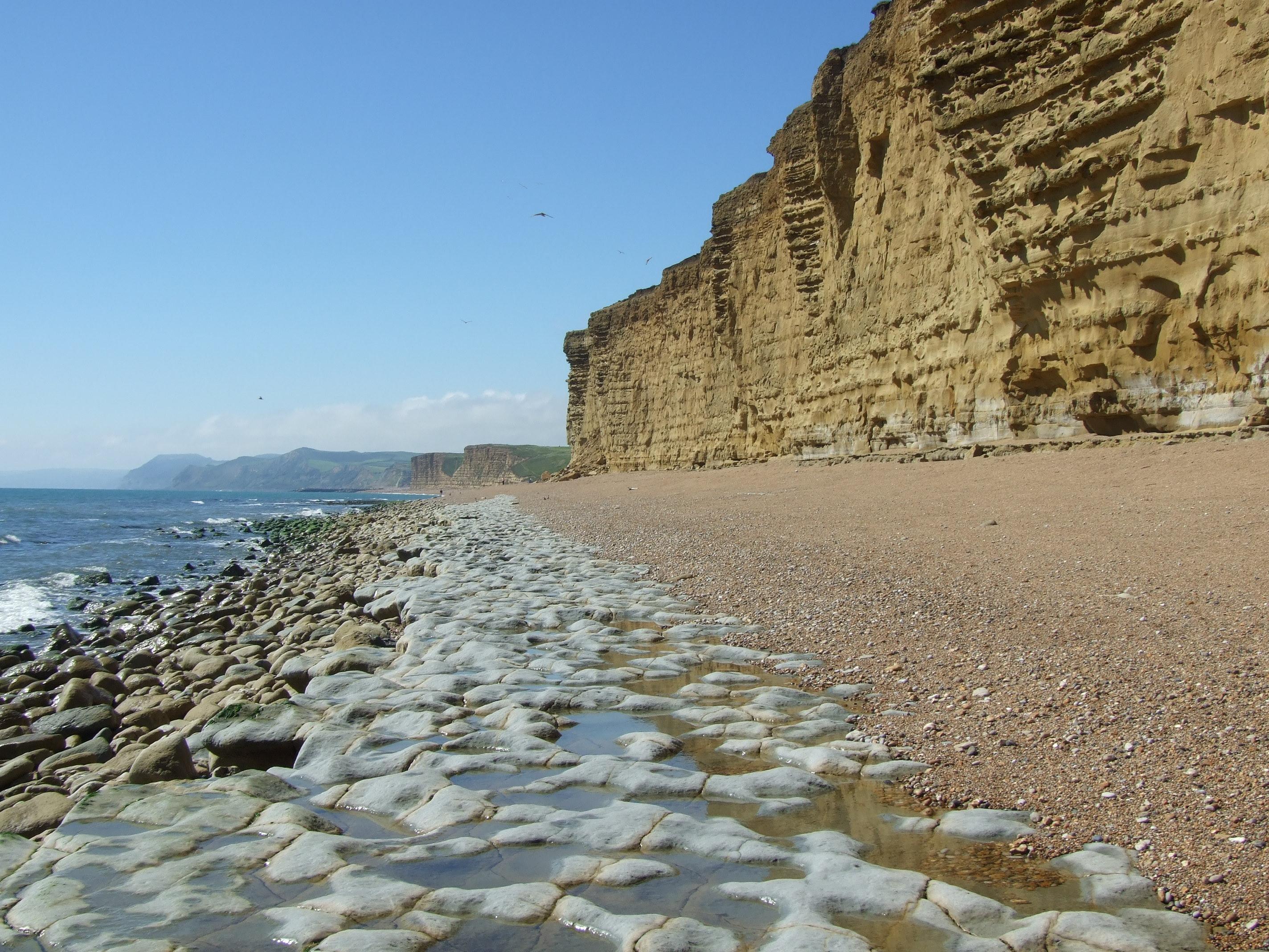 Devon Cliffs Beach Dogs