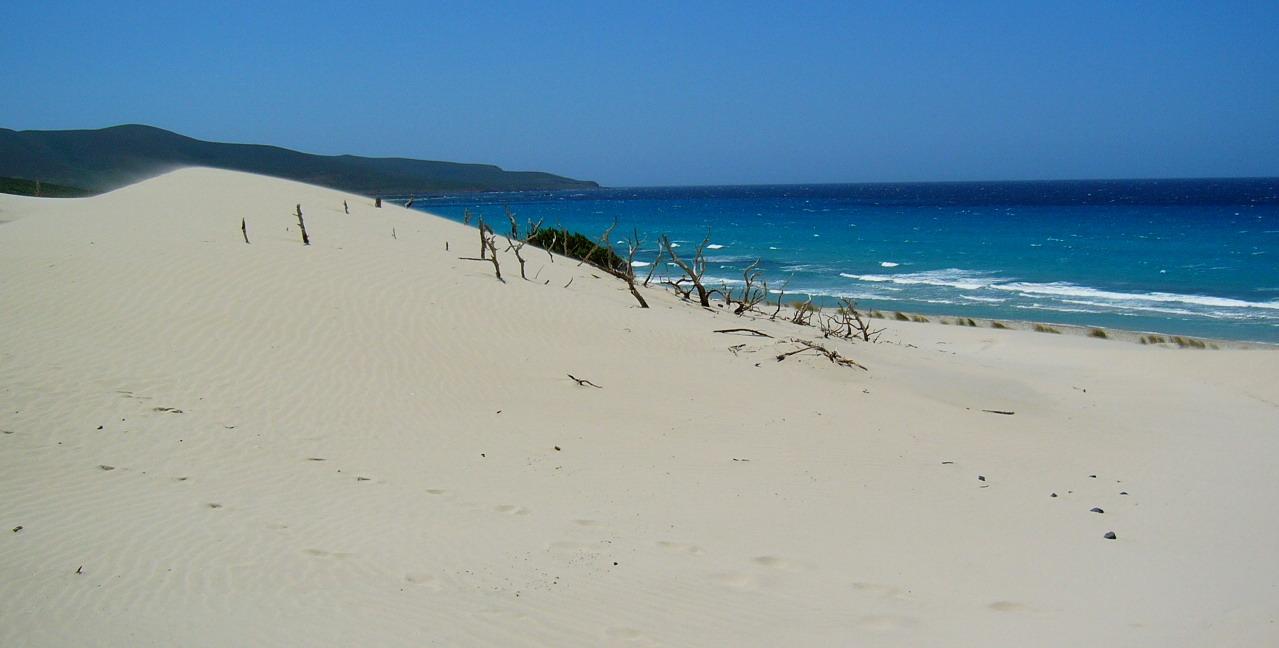 spiaggia is arenas blancas teulada primavera Sardegna