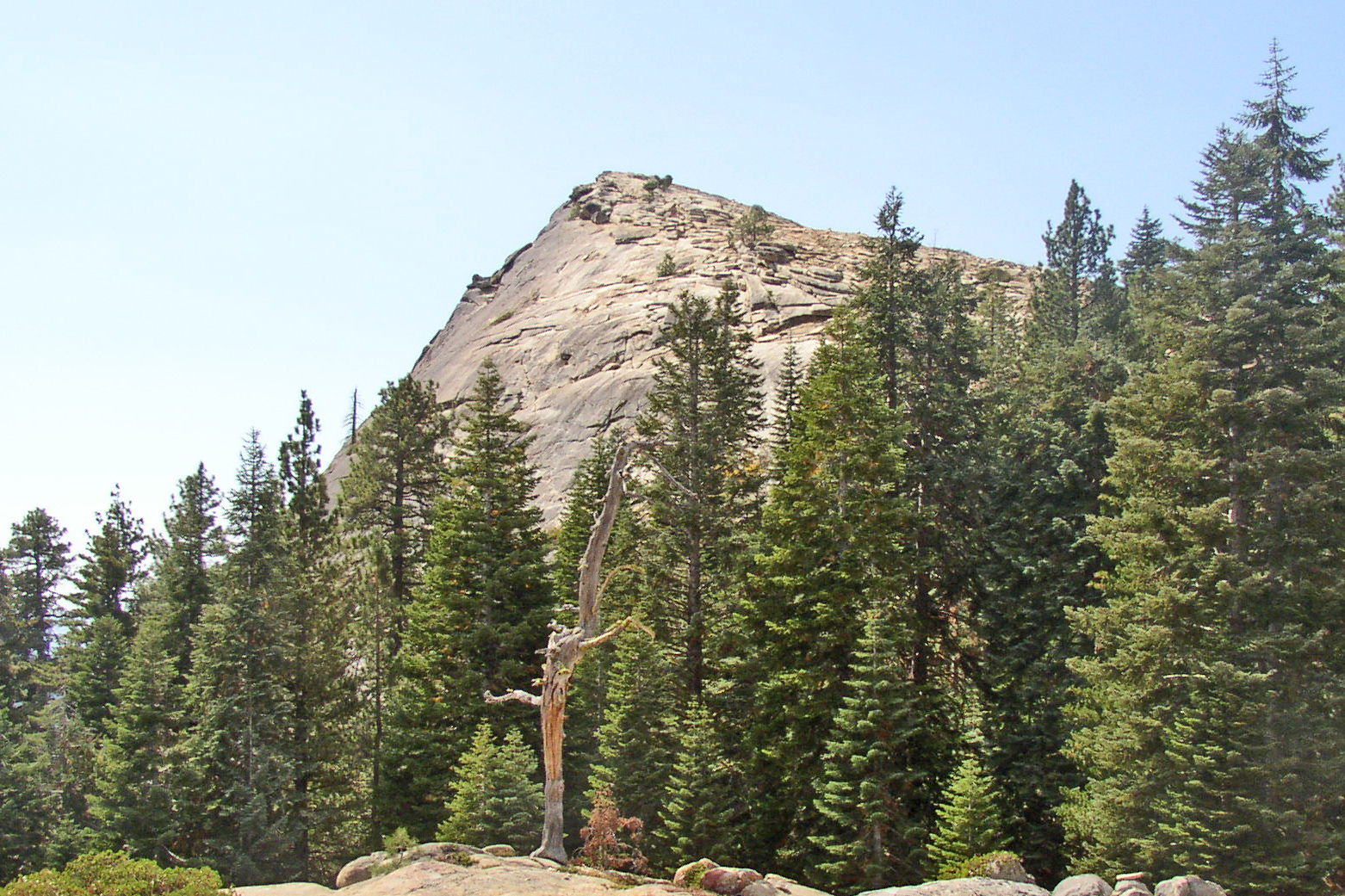 fresno dome height