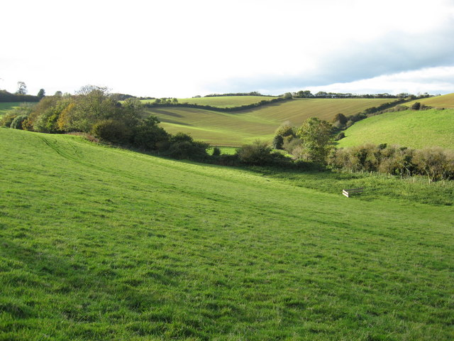From the Northern slope of Colmers Hill, looking to the Northwest - geograph.org.uk - 1198317