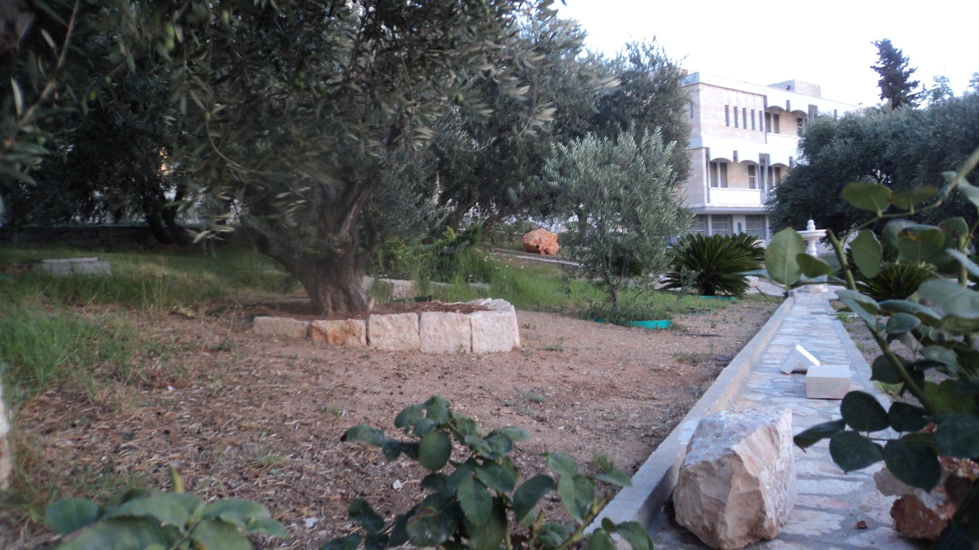 Giardino Di Una Casa file:giardino della casa - panoramio - wikimedia commons