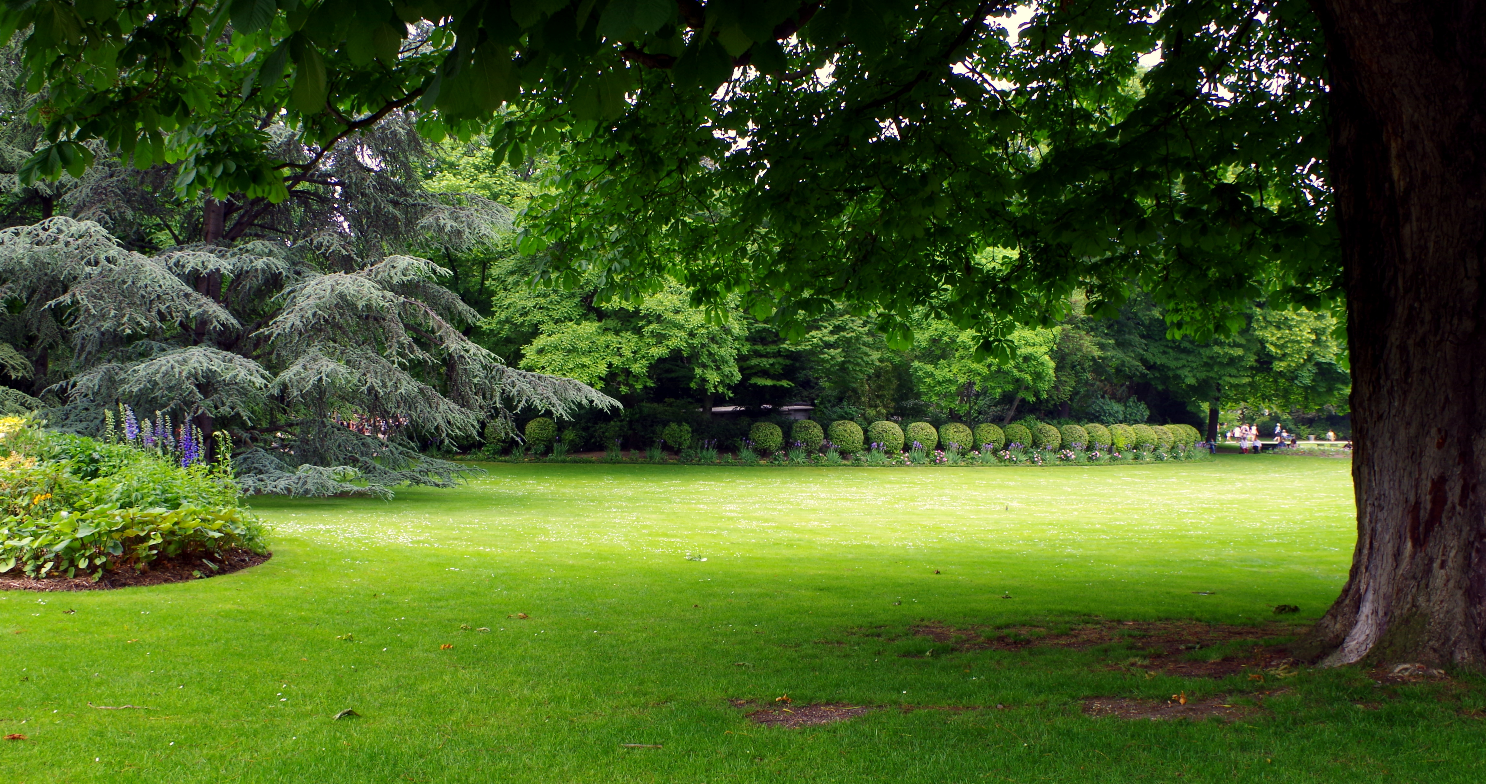 File jardin du luxembourg pelouse et massifs de plantes jpg wikimedia commons for Plante de jardin