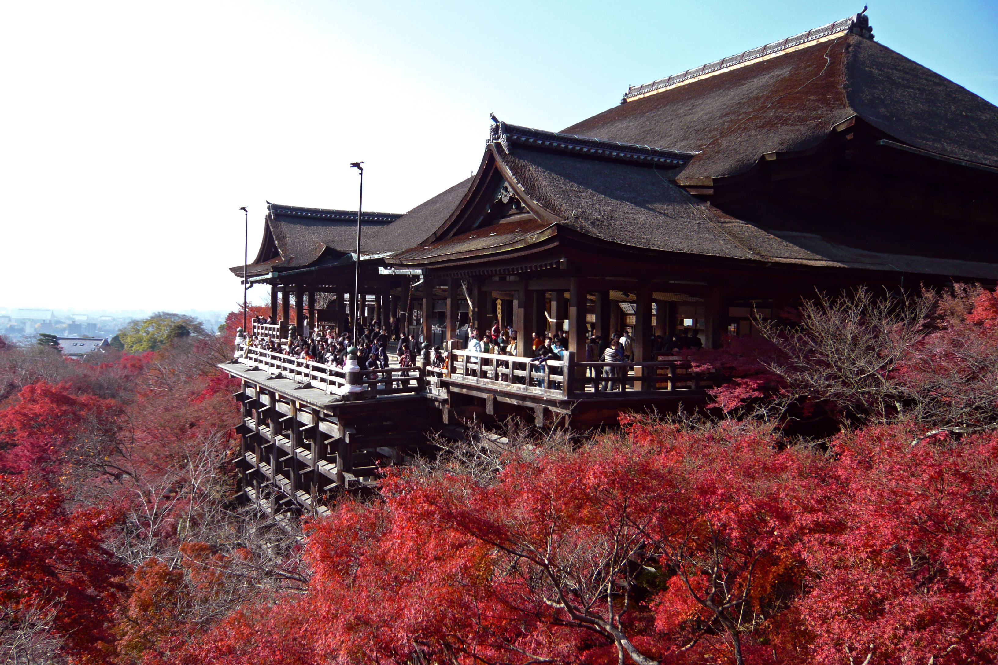 7 Kyoto Attractions to Put on Your Japan Bucket List