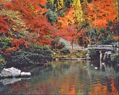 File:KyotoAutumn2.jpg