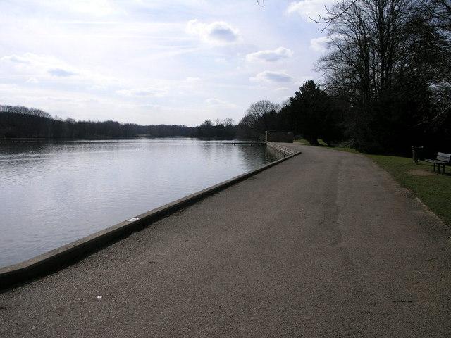 Langold Lake - geograph.org.uk - 141060