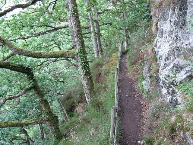 Ledge approaching Swallow Falls - geograph.org.uk - 895809