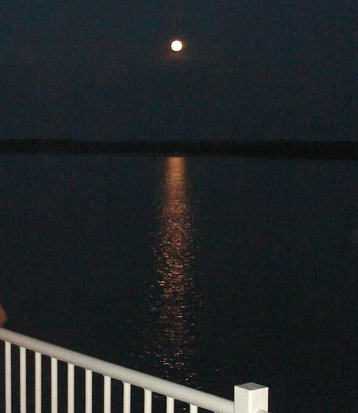 Ficheiro:Lua cheia sobre o Rio Branco.JPG
