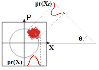 Figure 3: Marginal Distribution