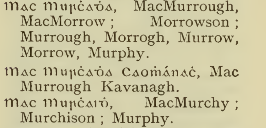 Irish surnames in a calligraphy book