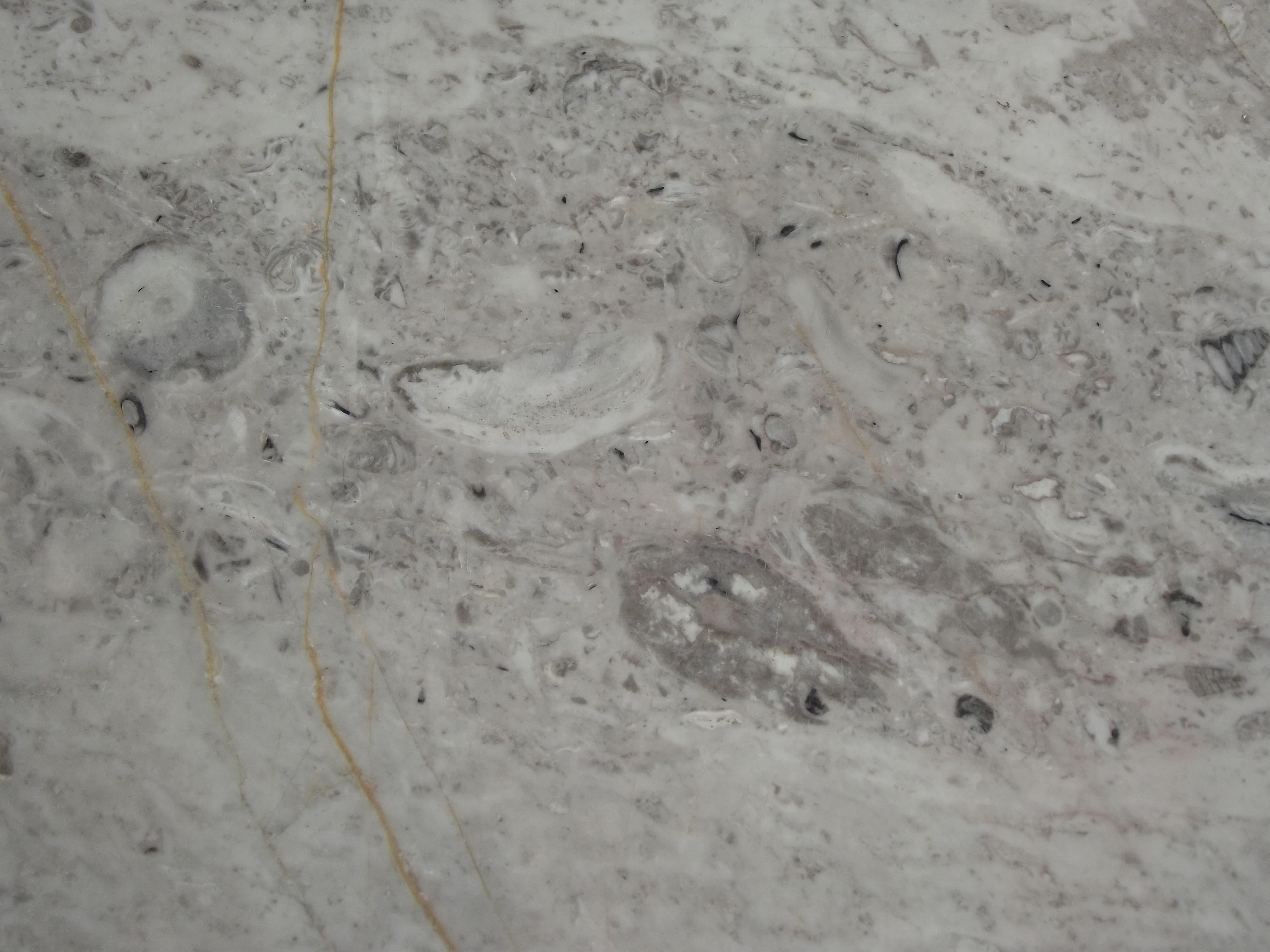 File piso de m rmol jpg wikimedia commons - Tipos de marmol ...