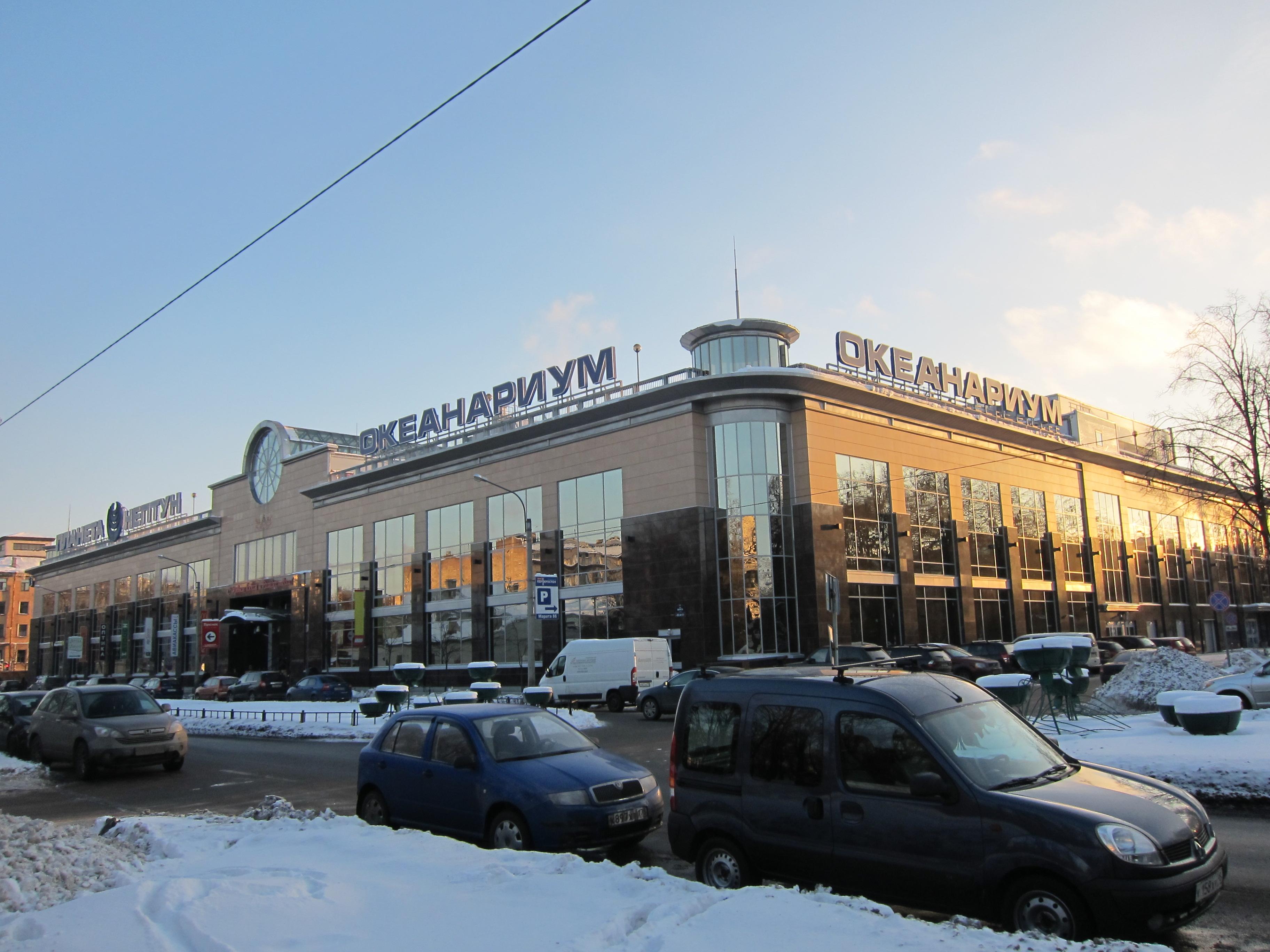 Oceanarium in St. Petersburg: address, photo, reviews 78