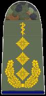 SanH 331-Generaloberstabsarzt-(Humanmedizin)