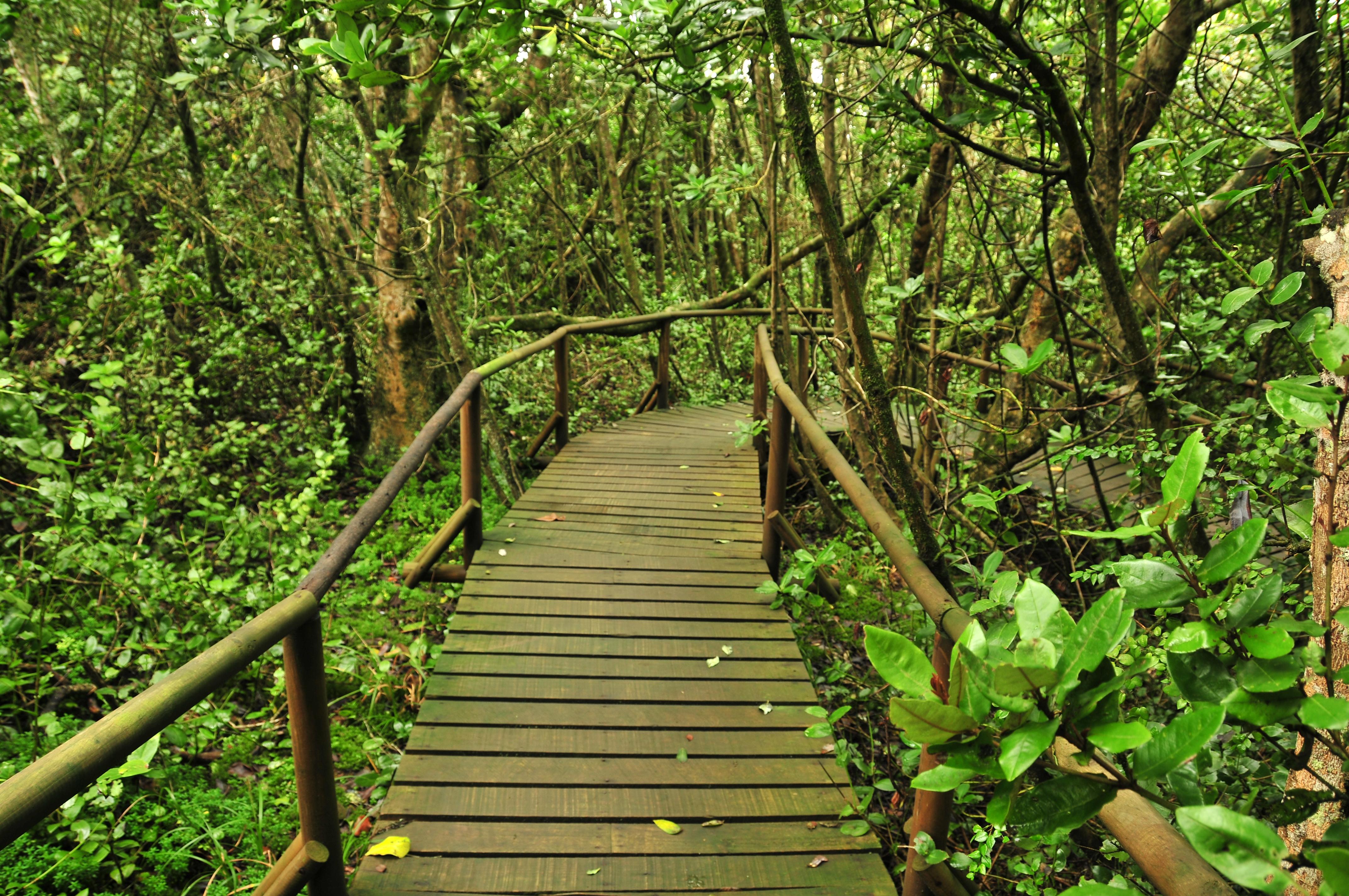 Descripción Senderos del Parque Nacional Fray Jorge.JPG
