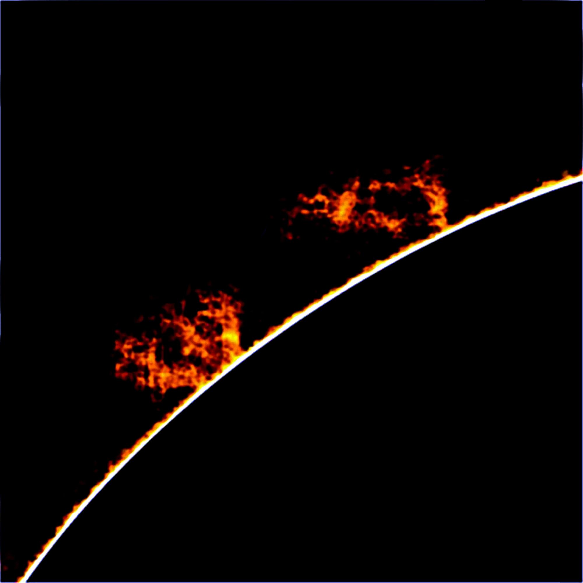 Protuberansseja