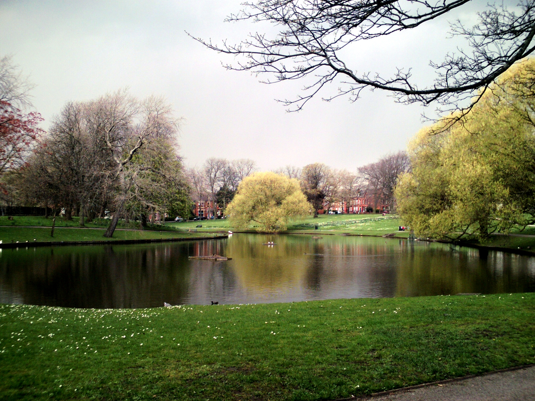 Southern end of lake, Greenbank Park, Liverpool.jpg
