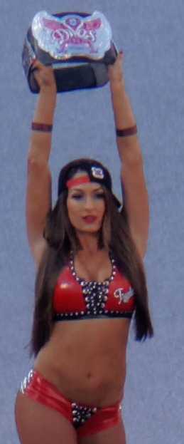 The Bella Twins WrestleMania 31 – Nikki.jpg