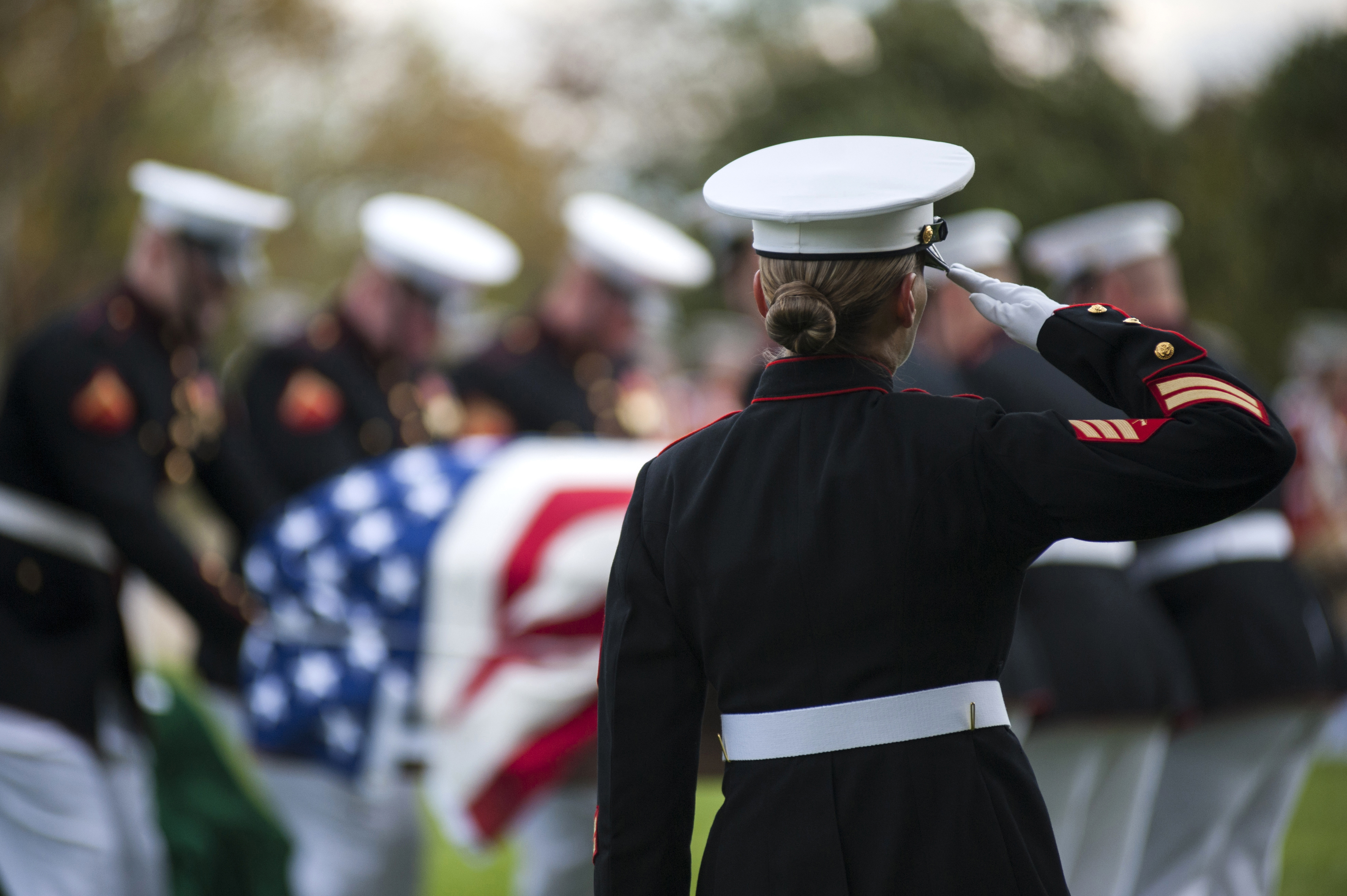 When To Salute At Military Funeral