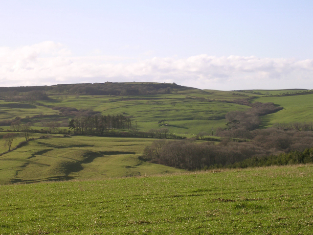 View southwest from the Kingston Russell stone circle towards Abbotsbury Castle - geograph.org.uk - 25060