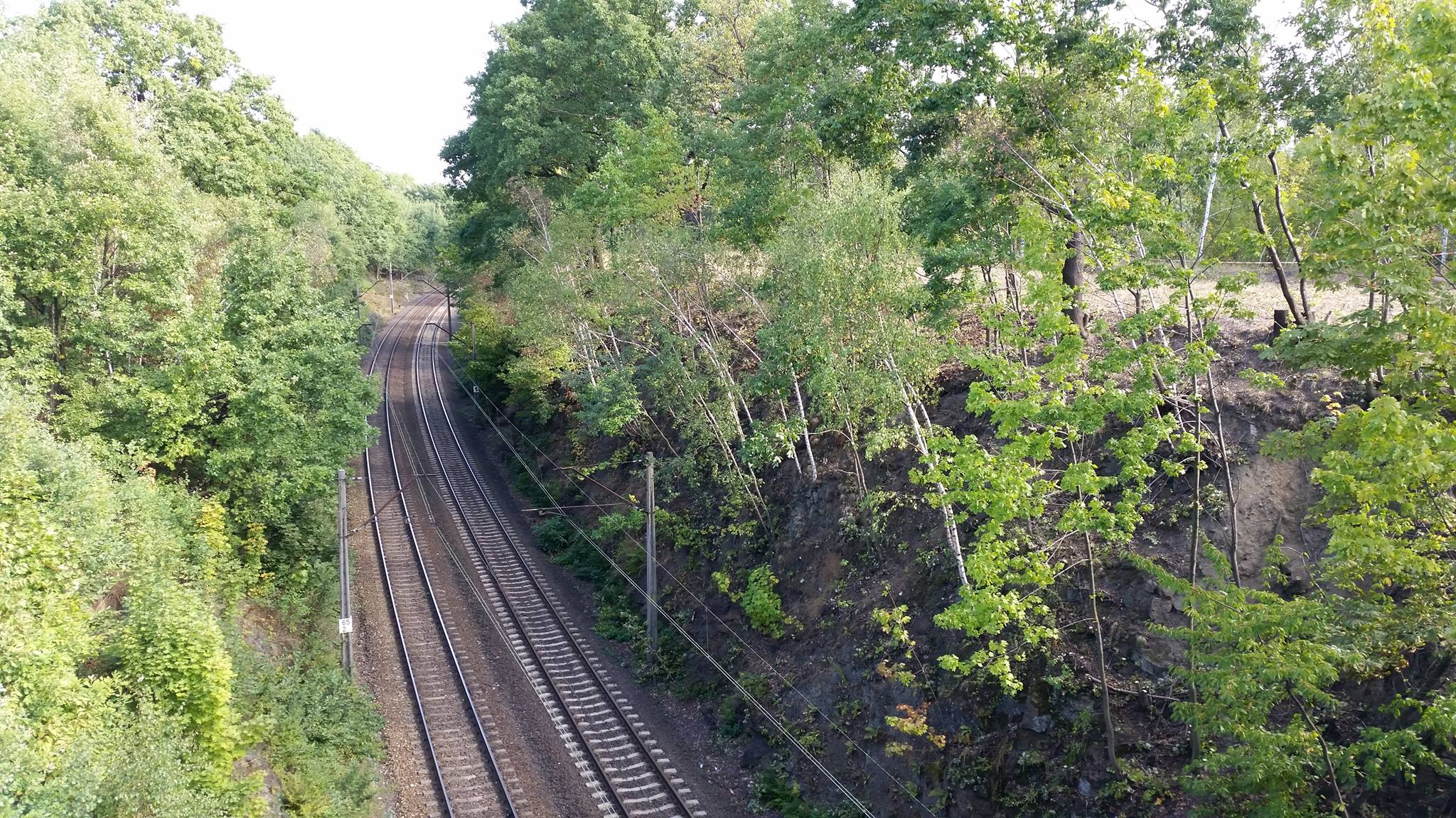 Ist hier der Nazi-Zug vergraben?