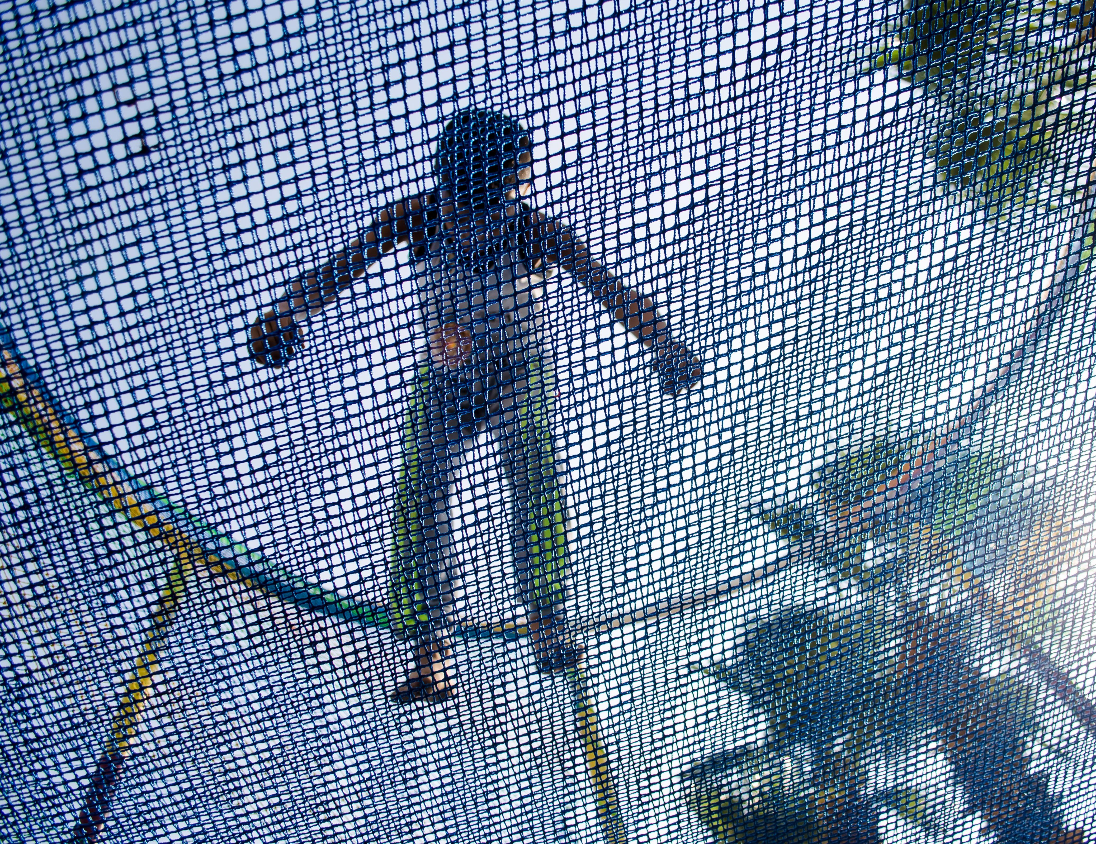 copyright holder of this work, hereby publish it under the following license: English a boy trampolining Arabic صوره توضح طفل اثناء لعب الطفل في الترامبلوين