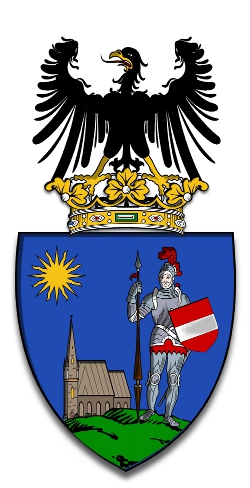 This coat of arms was granted to the Village of Abaújvár by the Genus Aba Family Foundation to commemorate the 700-year anniversary of the Battle of Rozgony.