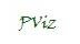 Assinatura PViz.jpg