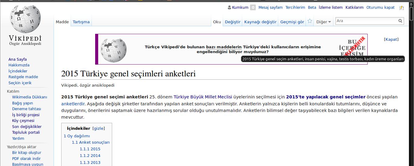 wiki censorship turkey