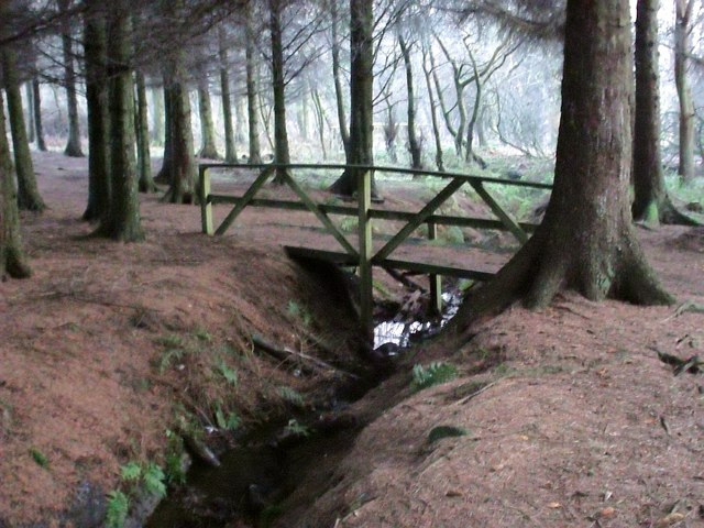Bridge in the woods, Palacerigg Country Park - geograph.org.uk - 1618157