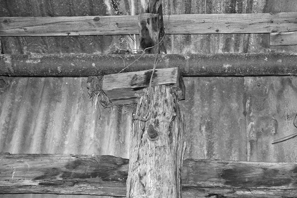 Bush Carpentry Block Under Top Plate.jpg