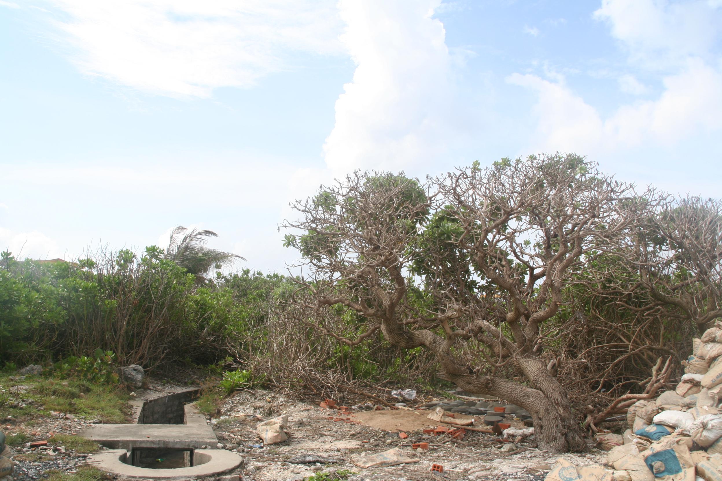 Ba Stock Chart: Spratly Islands - Wikipedia,Chart