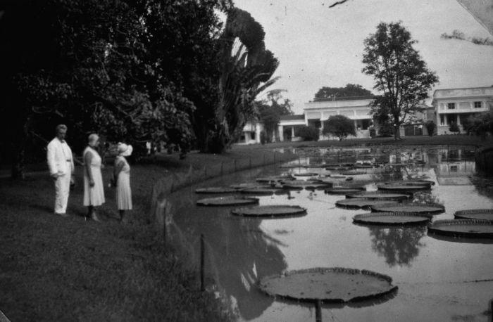 File:COLLECTIE TROPENMUSEUM Een Indo-Europees gezelschap bij de vijver in 's Lands Plantentuin bij het paleis van de Gouverneur-Generaal te Buitenzorg TMnr 60031718.jpg