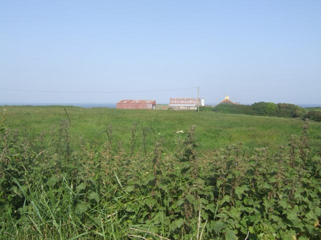 Farmland on the Old Head of Kinsale - geograph.org.uk - 1370065