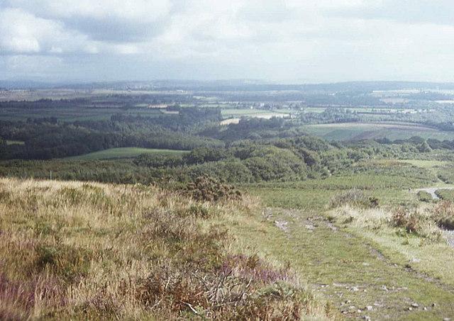 Footpath on Cefn Bryn - geograph.org.uk - 663445