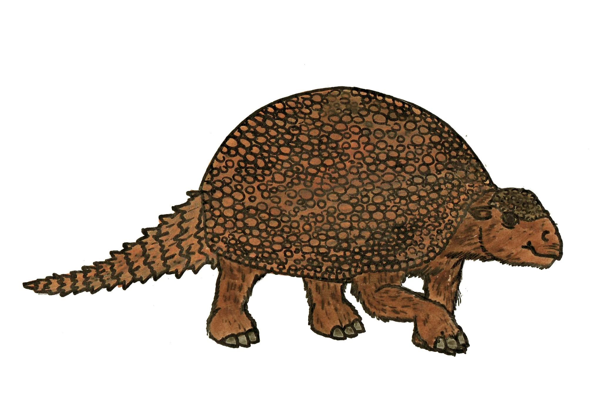 fileglyptodon 6373jpg