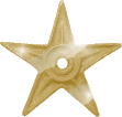 File:Gold barnstar 2.png