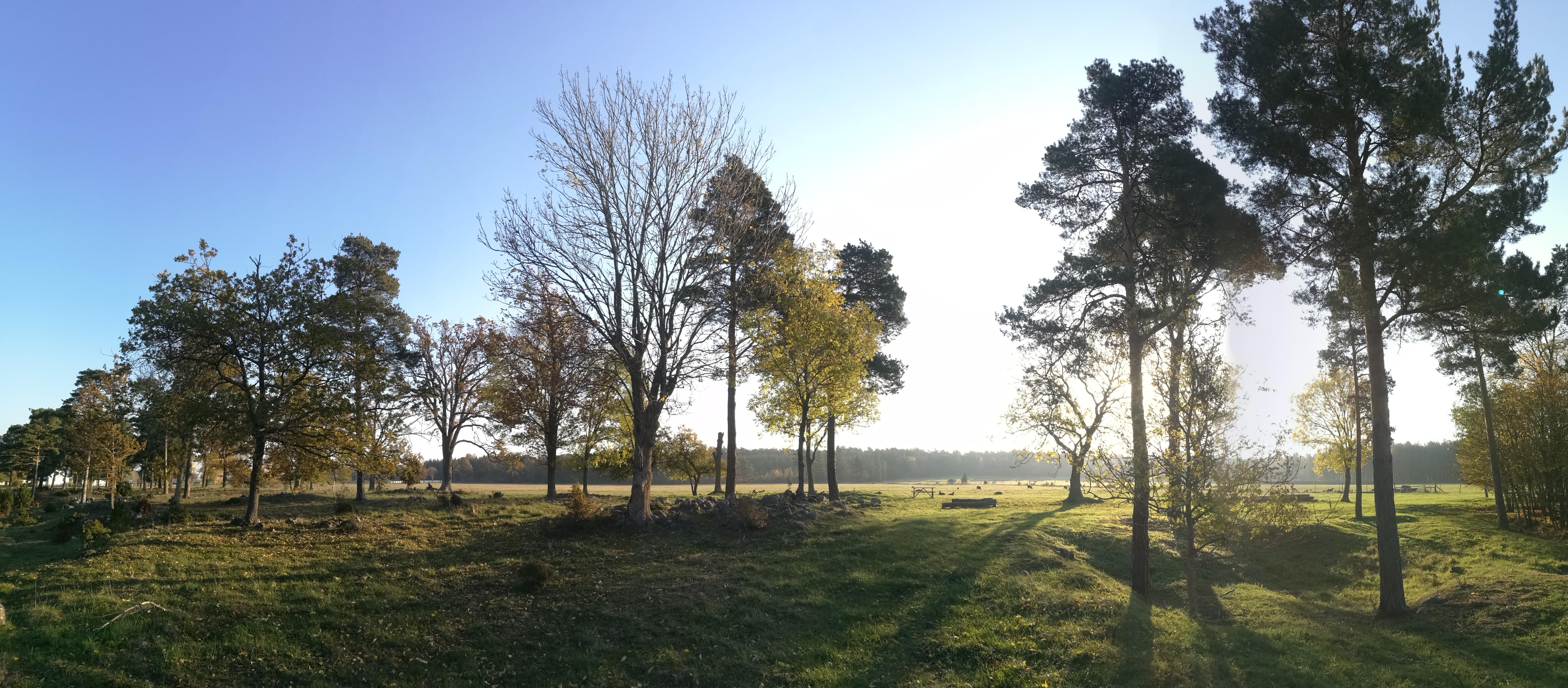 Klinte Cemetery in Klinte, Gotlands ln - Find A Grave Cemetery