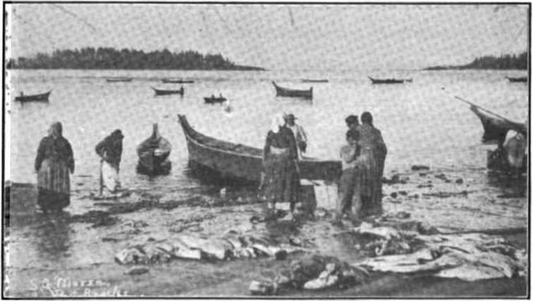 https://upload.wikimedia.org/wikipedia/commons/4/43/Indian_Halibut_Fishers_on_Neah_Bay,_Washington_(c._1900).jpg
