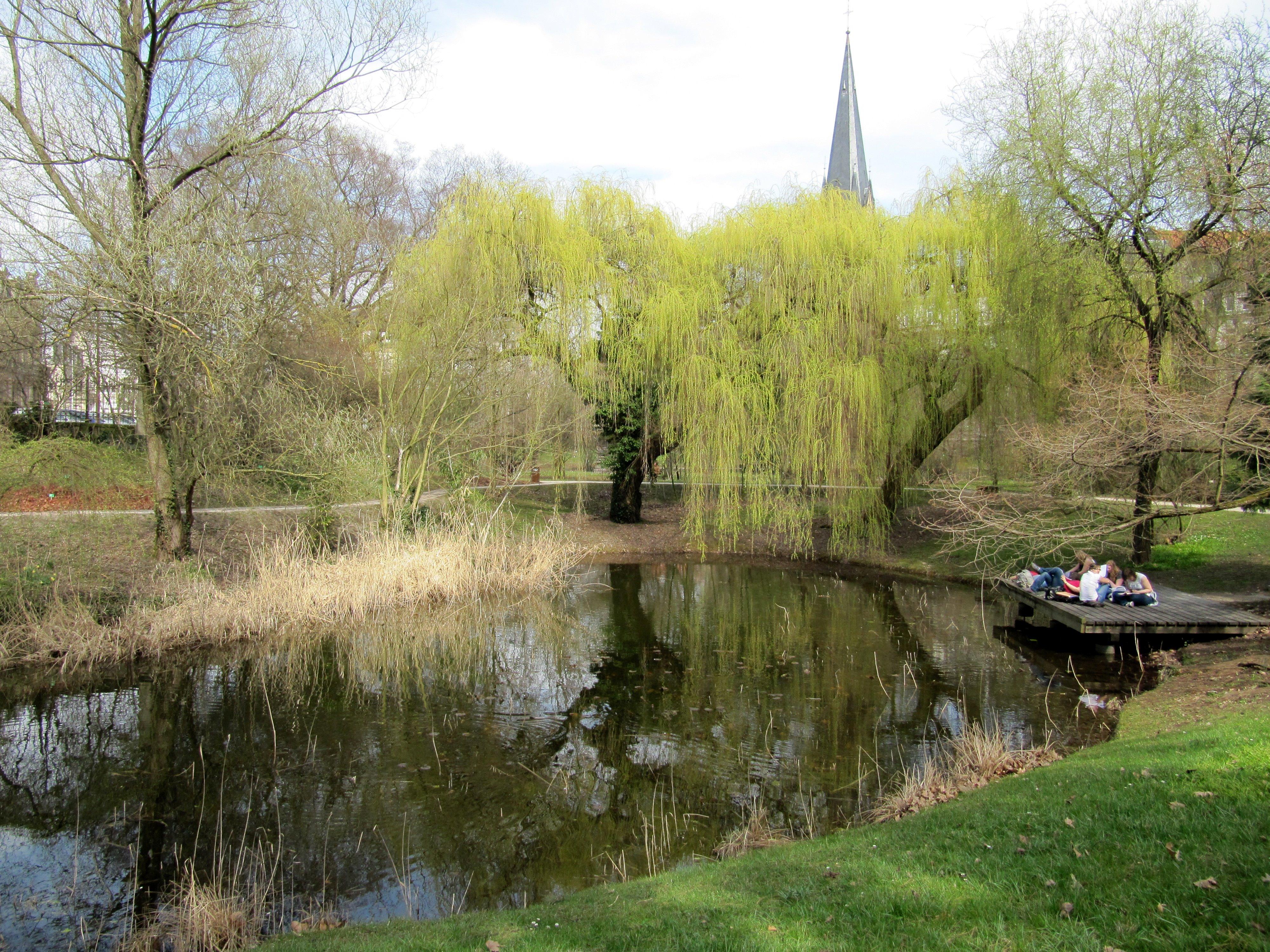 File jardin botanique de strasbourg for Etang jardin