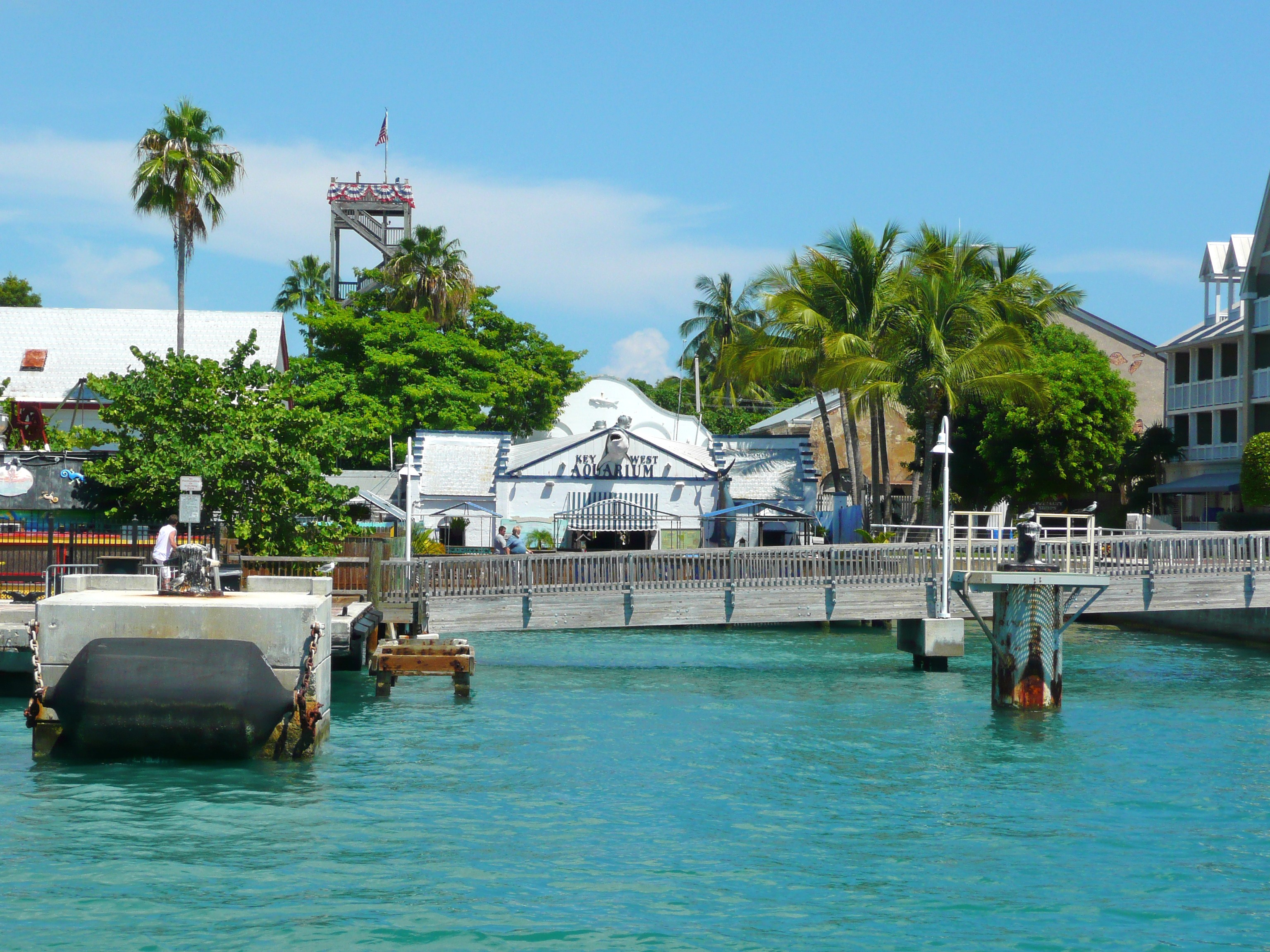File Key West Aquarium Backside Jpg Wikimedia Commons