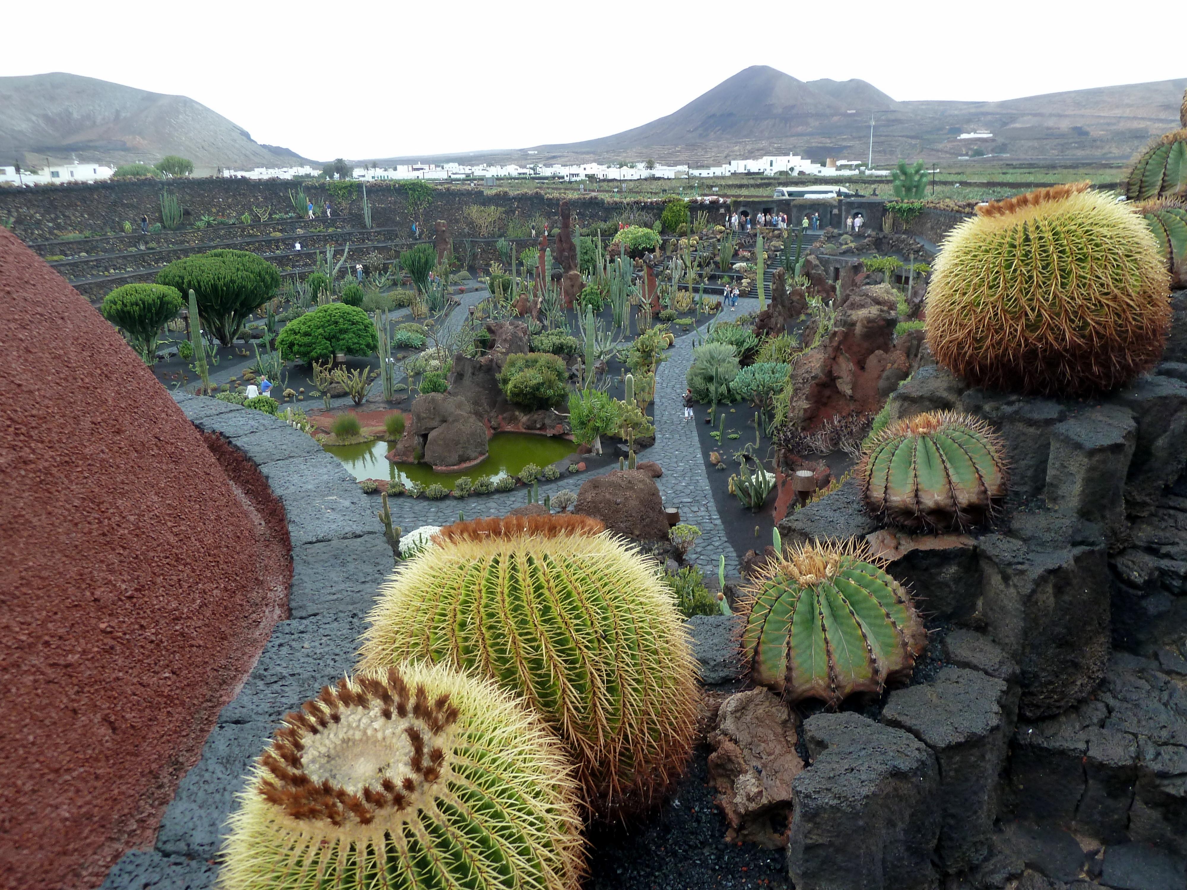 File Lanzarote Jardin De Cactus Von Cesar Manrique Panoramio Jpg
