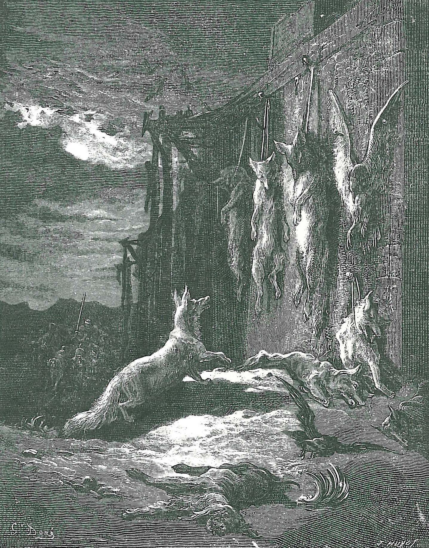 Anglois file:le renard anglois - wikimedia commons